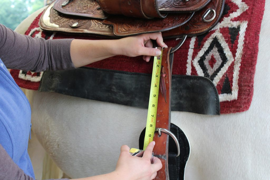 Measuring a Cinch