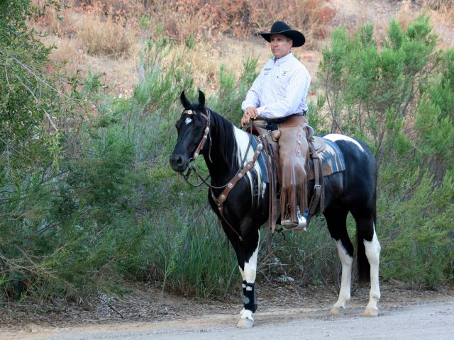 Not so Scary Trails: Being the Leader Your Horse Needs