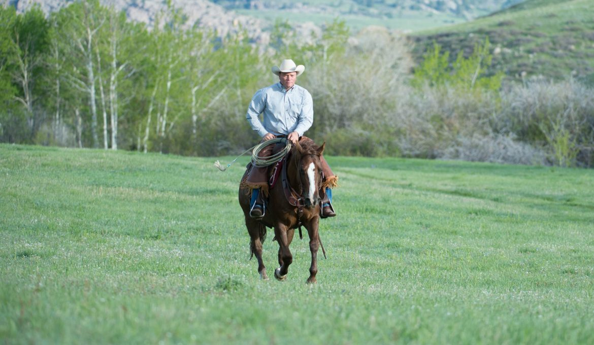 Loping with Confidence by Ken McNabb