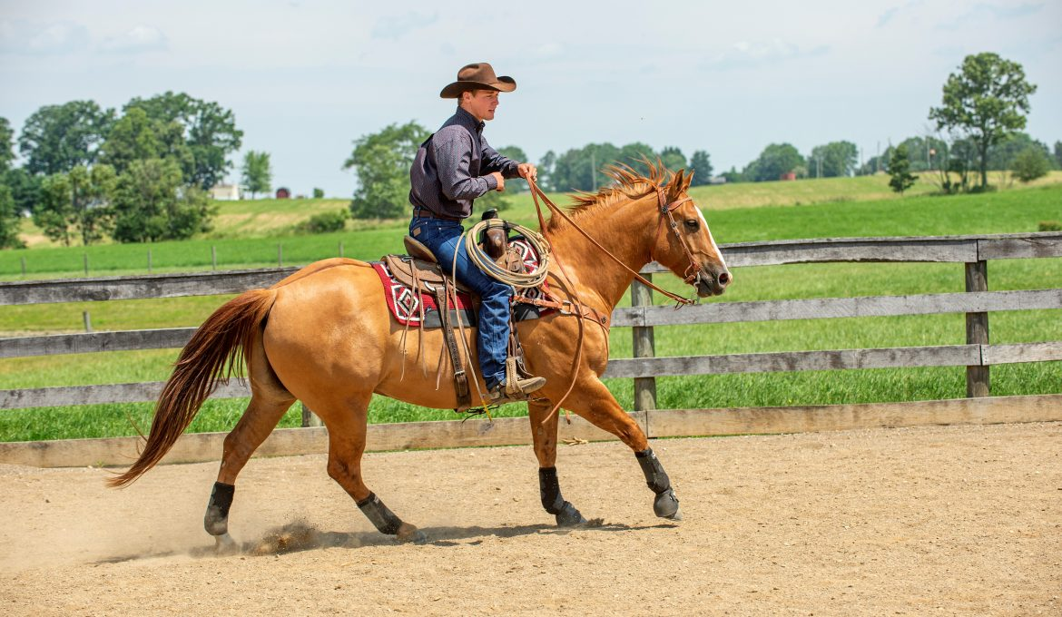 Success in the Saddle: Finding Success at the Lope