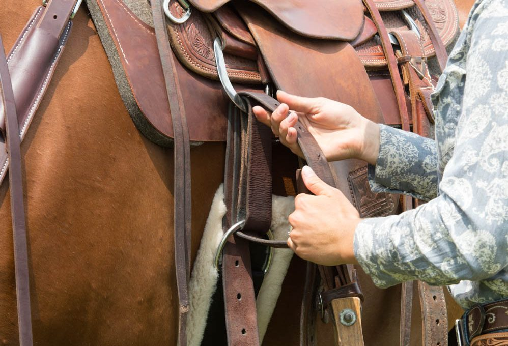 Do You Have the Right Size Cinch For Your Horse?