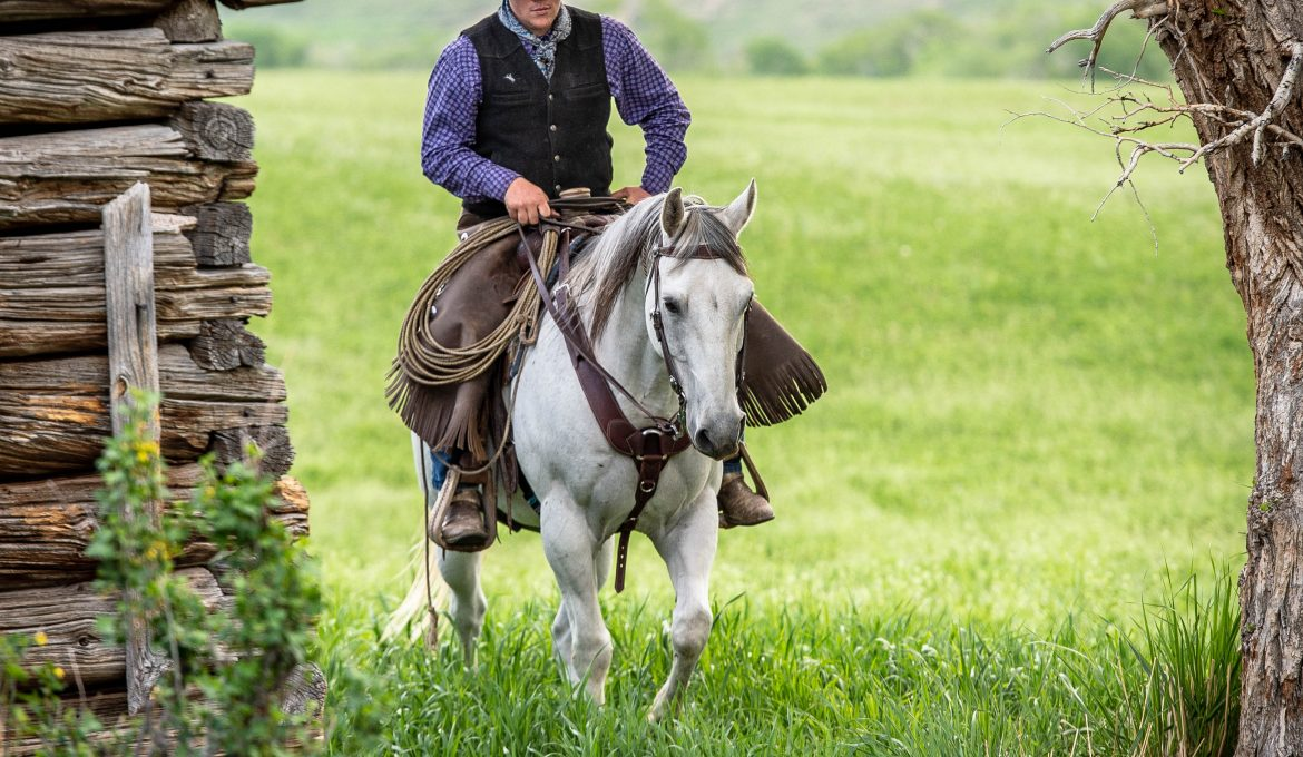 12th Annual Diamond-McNabb Ranch Horse Sale to be Hosted Saturday, June 6, 2020 in Wyoming