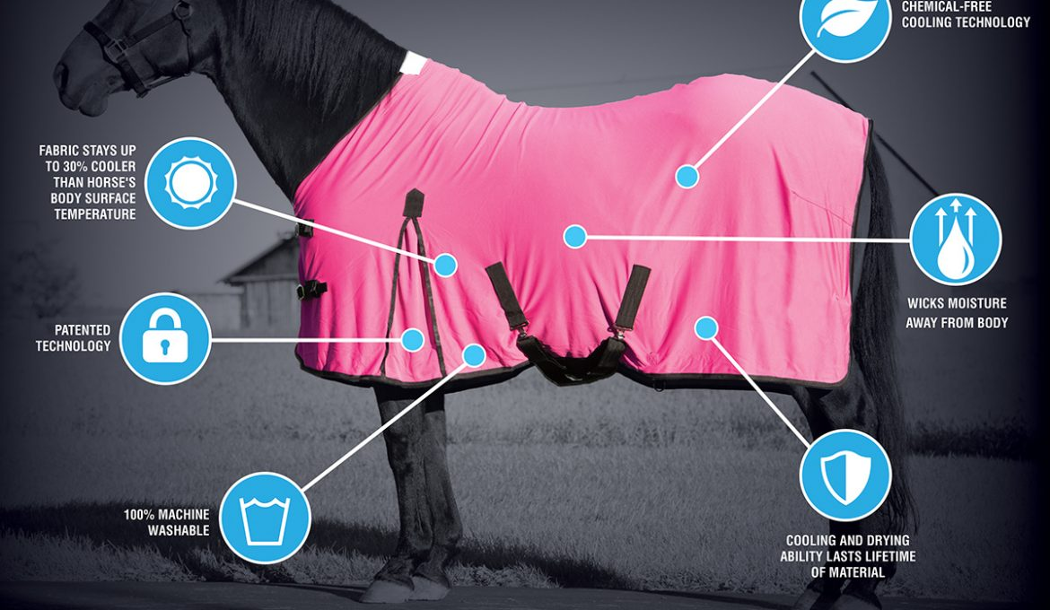 CoolAid® Equine Cooling Blanket and Neck Wraps